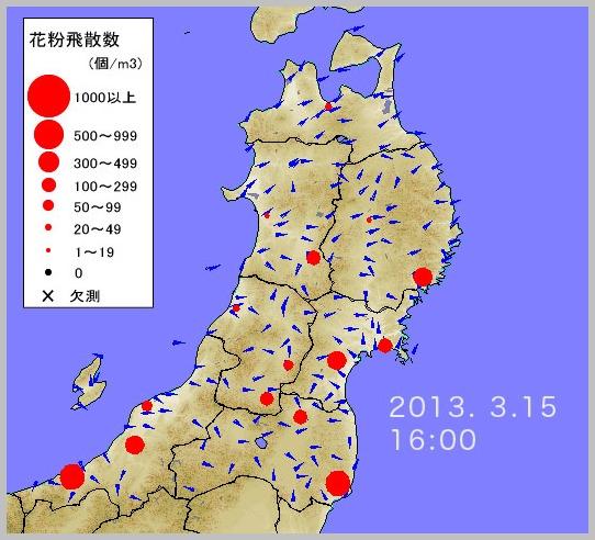 東北でも花粉が飛び始めました。_e0084756_17145575.jpg