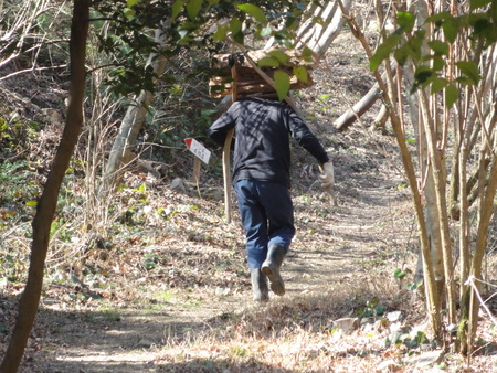 ウグイスが鳴いています  in  孝子の森_c0108460_18284179.jpg