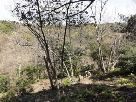 ウグイスが鳴いています  in  孝子の森_c0108460_1828786.jpg