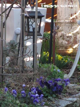 春の訪れに誘われてガーデニング♪(2)_a0243064_20181336.jpg