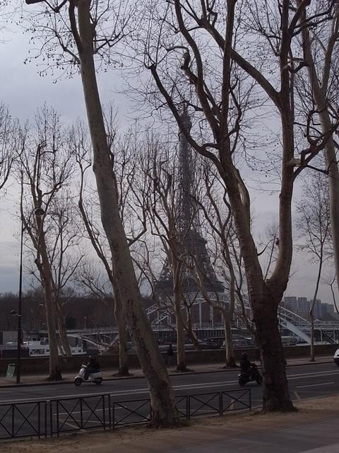 パリの風景(パリ便り3)_c0176078_1537560.jpg
