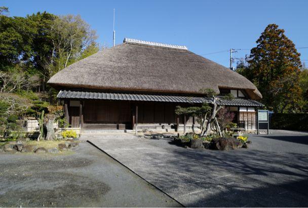 花咲く房総から横浜へ_d0147406_12402564.jpg