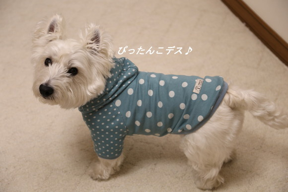 手作りのお洋服☆_a0161111_22375520.jpg