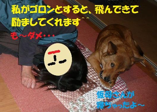 f0121712_12494649.jpg