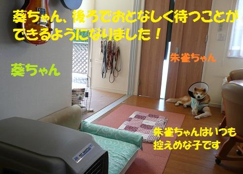 f0121712_633198.jpg