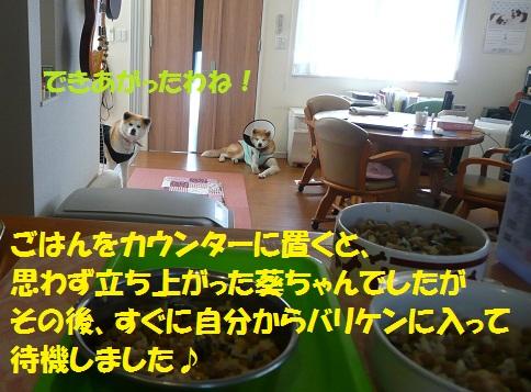 f0121712_633293.jpg