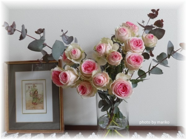 薔薇ミミエデン_d0165645_10351924.jpg