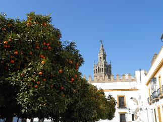 スペインと言えば・・・カルメン??_a0214711_9211588.jpg