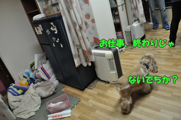 b0067012_022526.jpg