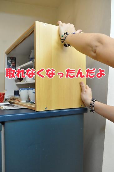 b0067012_143645.jpg