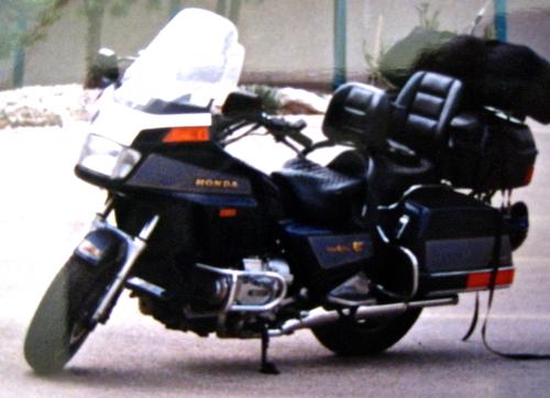 f0238562_5264792.jpg