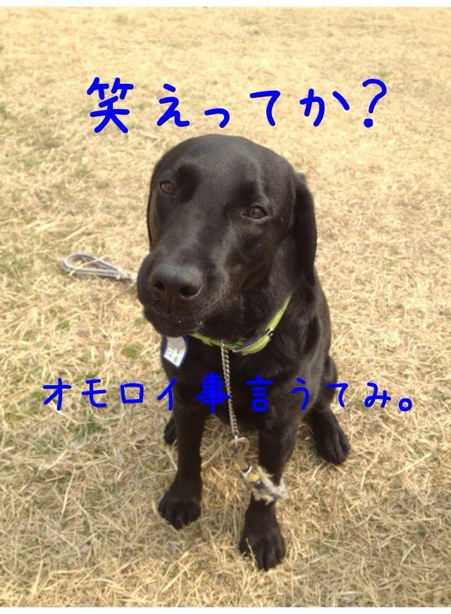 小太郎劇場_e0244283_3144798.jpg