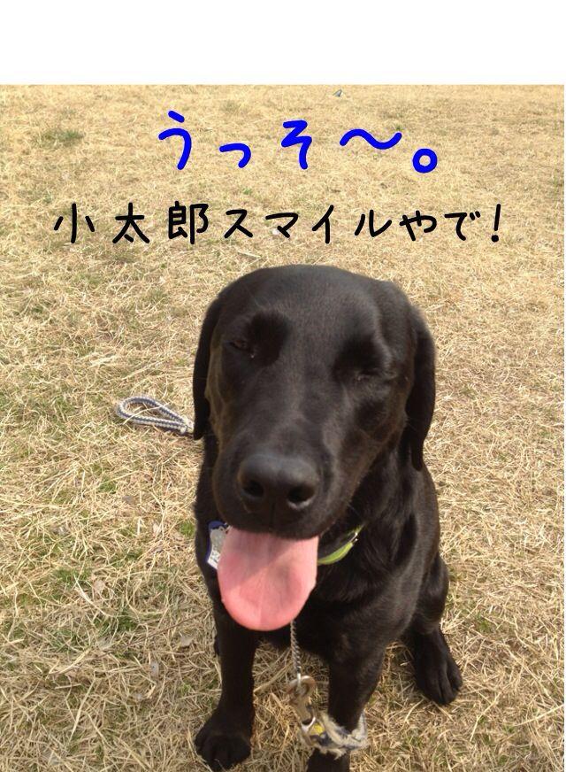 小太郎劇場_e0244283_3144995.jpg