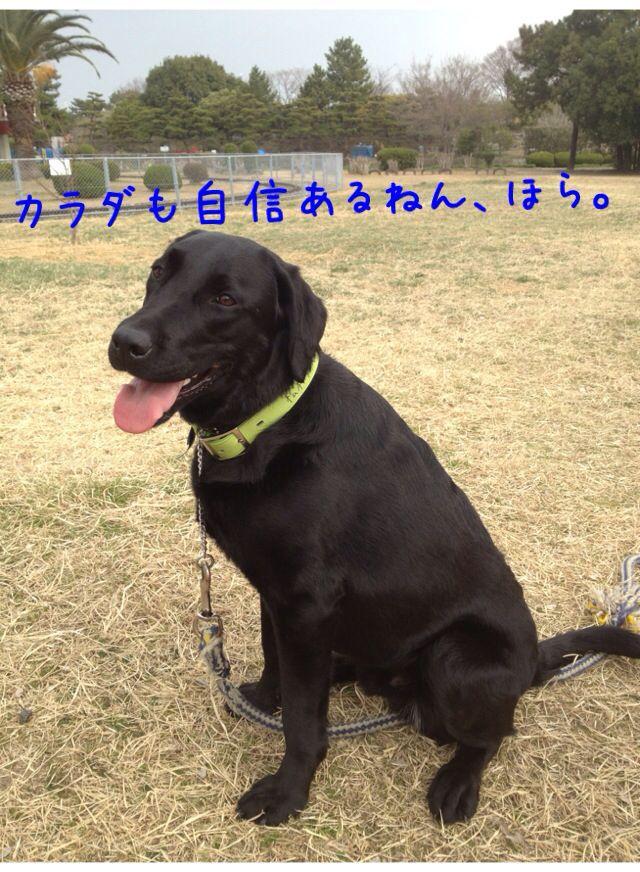 小太郎劇場_e0244283_3145137.jpg