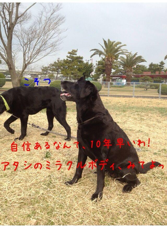 小太郎劇場_e0244283_315037.jpg