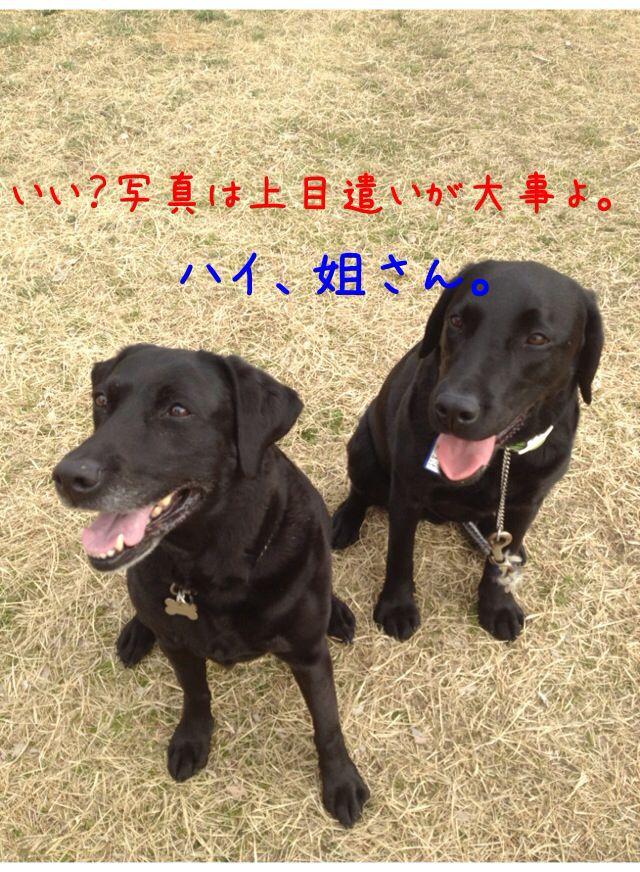 小太郎劇場_e0244283_315312.jpg