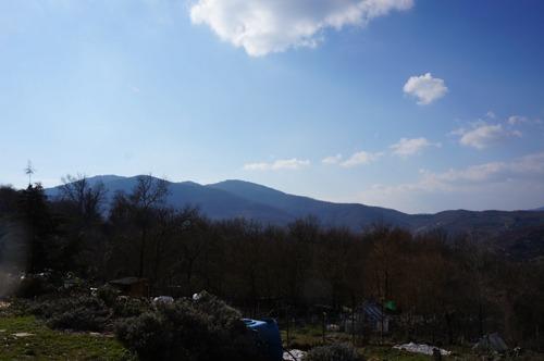 春のような♪_f0106597_329102.jpg