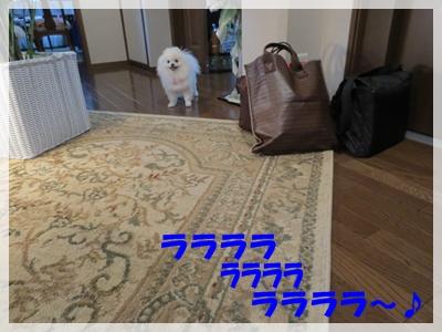 b0167519_22383713.jpg