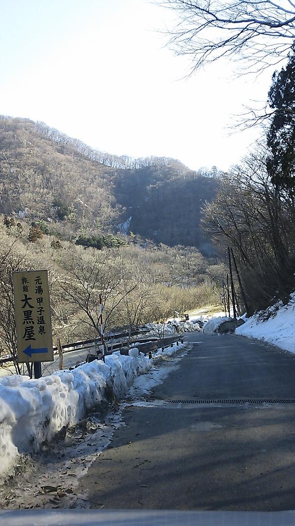 雪解け&成長_c0213830_12332026.jpg