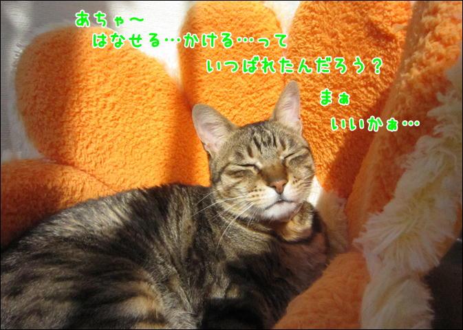 d0139352_143504.jpg