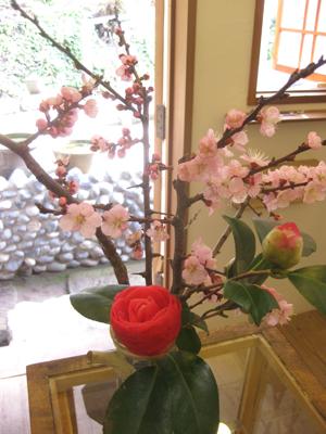 20日(水)春分の日の営業_e0170562_1614340.jpg