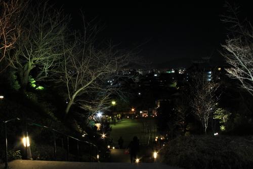 京都 2013年花灯路_d0202264_6541424.jpg
