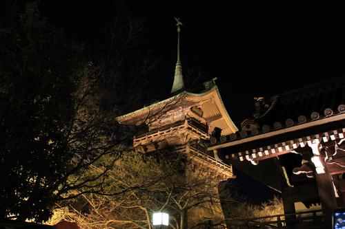 京都 2013年花灯路_d0202264_65504.jpg