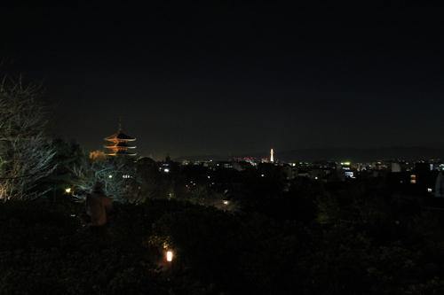 京都 2013年花灯路_d0202264_6564240.jpg