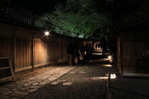 京都 2013年花灯路_d0202264_6581256.jpg