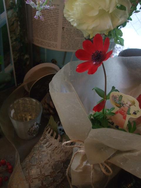 オークリーフ(桜の開花)_f0049672_16493718.jpg