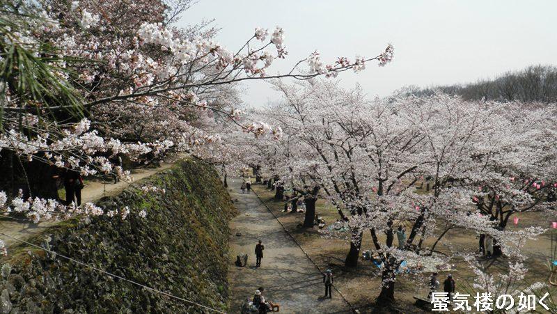 今年(H25)も懐古園桜まつりと懐古神社例大祭に行きたいな(例大祭は4月24日・25日))_e0304702_815395.jpg