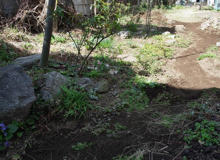 春の庭作り_e0276411_22334449.jpg