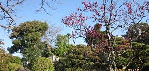 長崎 グラバー園_b0228113_1053667.jpg