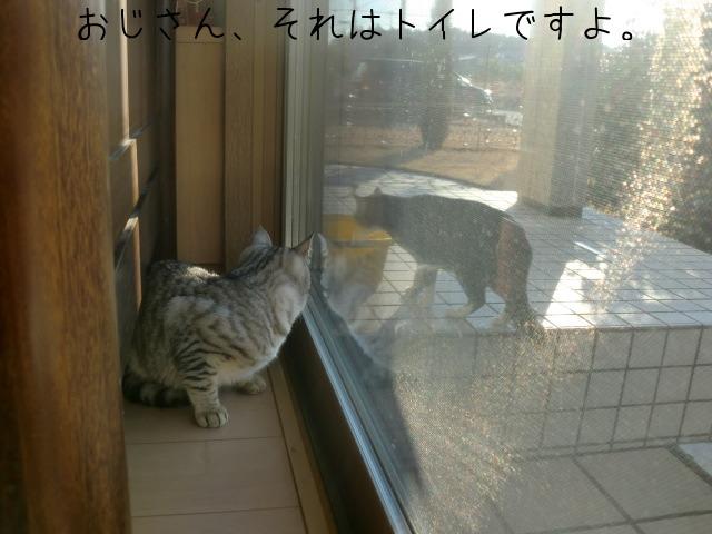 c0259945_8422177.jpg