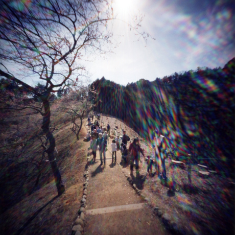 青梅市梅の公園 吉野梅郷 東京都青梅市 Pinhole Photography_f0117059_16548.jpg