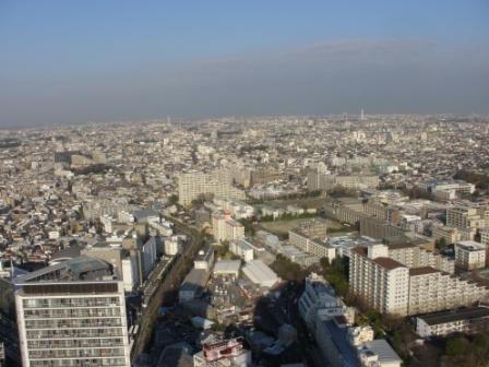 東京に行きました_d0173687_18285474.jpg