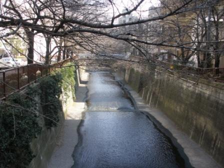 東京に行きました_d0173687_1829314.jpg