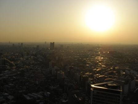 東京に行きました_d0173687_18294161.jpg