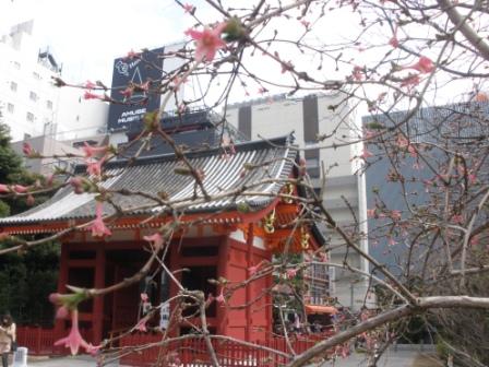 東京に行きました_d0173687_18314932.jpg