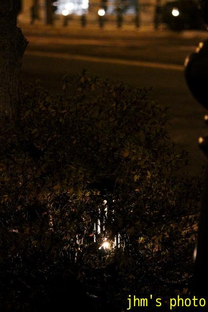 西部地区夜風景_a0158797_959828.jpg