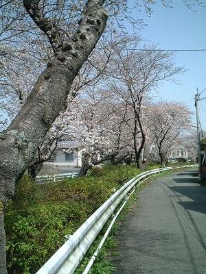 小さな旅 ~春のうららの~ ♪_b0228113_1153262.jpg