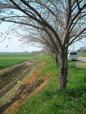 小さな旅 ~春のうららの~ ♪_b0228113_1204979.jpg