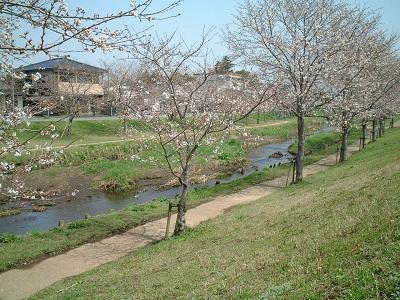 小さな旅 ~春のうららの~ ♪_b0228113_1245920.jpg