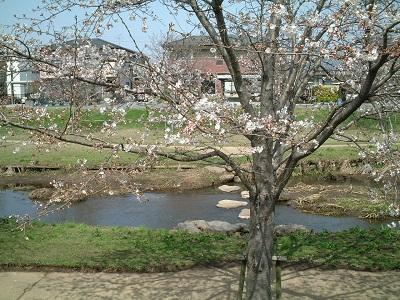 小さな旅 ~春のうららの~ ♪_b0228113_1251499.jpg