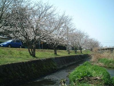 小さな旅 ~春のうららの~ ♪_b0228113_12597.jpg