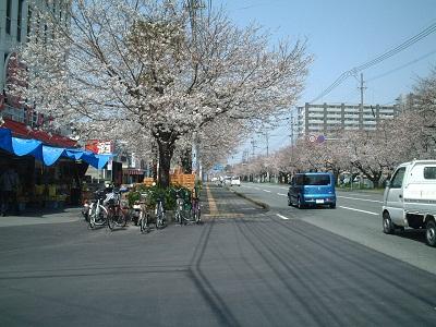 小さな旅 ~春のうららの~ ♪_b0228113_1263158.jpg