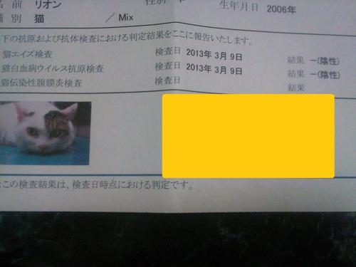 f0114416_22583389.jpg