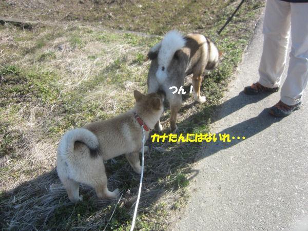 f0143123_10125851.jpg