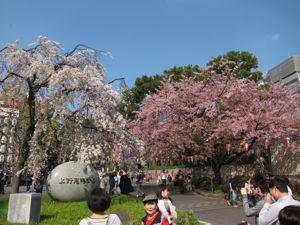 上野散策:春の芸術鑑賞_d0010432_1383867.jpg