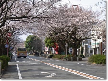 春分の日_c0147448_1820858.jpg